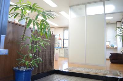 芳木会計事務所の玄関です。観葉植物がお出迎えしてくれる、明るい空間です。